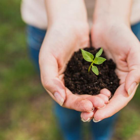 La sostenibilidad como pilar fundamental de GreenLand